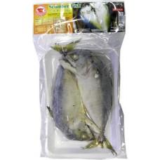 Frozen Steamed scomber fish 170g